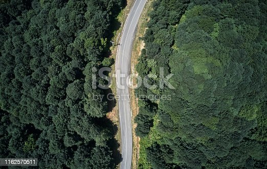 888361900 istock photo Driving Through Forest 1162570511