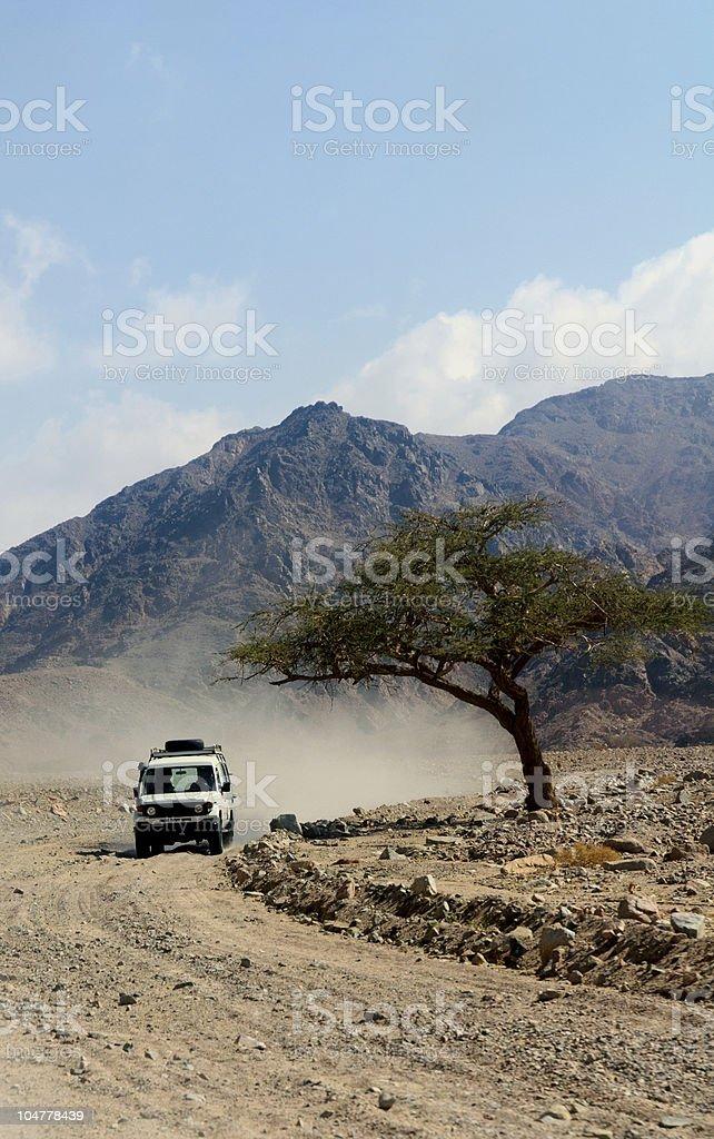 Driving through Sinai royalty-free stock photo