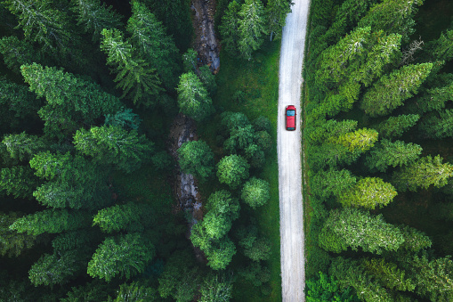 Red car driving on idyllic country road through the green forest.