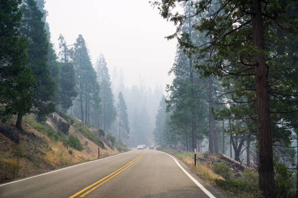 Driving through Yosemite National Park; Smoke from wildfires in the air stock photo