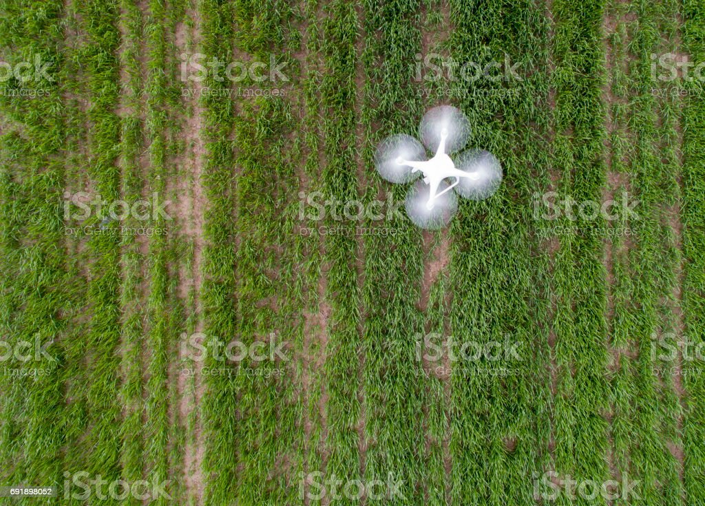 Drone flying above field stock photo