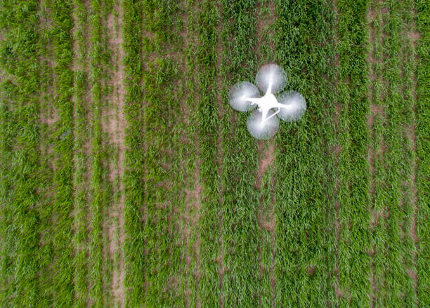 drone flying above field - drones stock photos and pictures