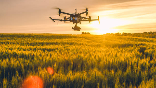 drone flying over field at sunset - drones stock photos and pictures