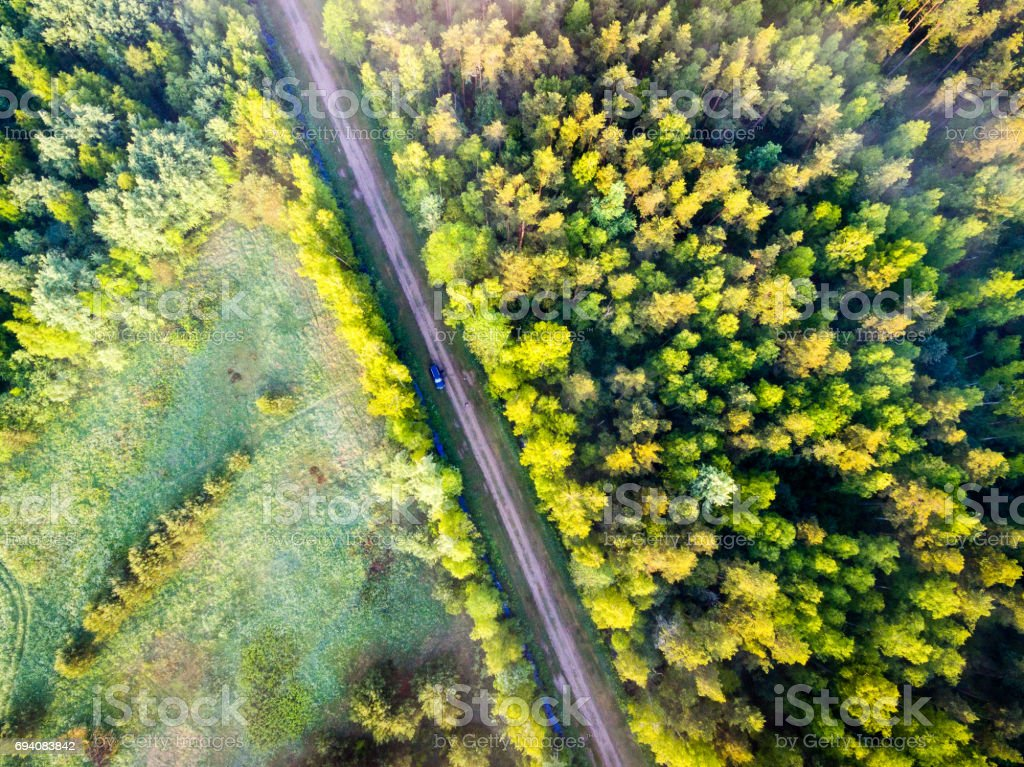 drone image. aerial view of morning mist over green forest stock photo
