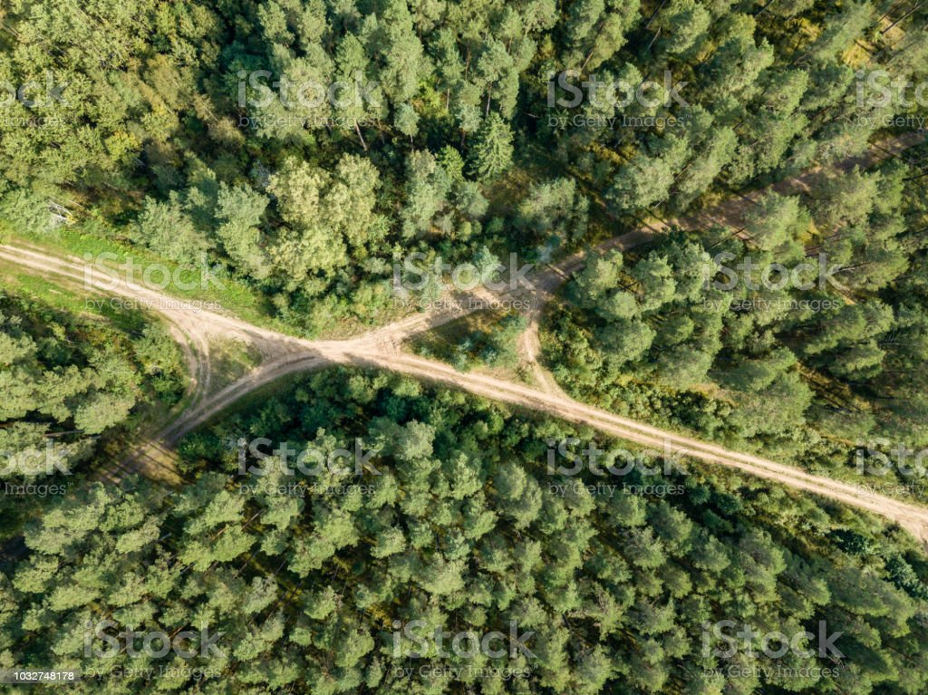 drone image. aerial view of rural gravel road in green forest and...