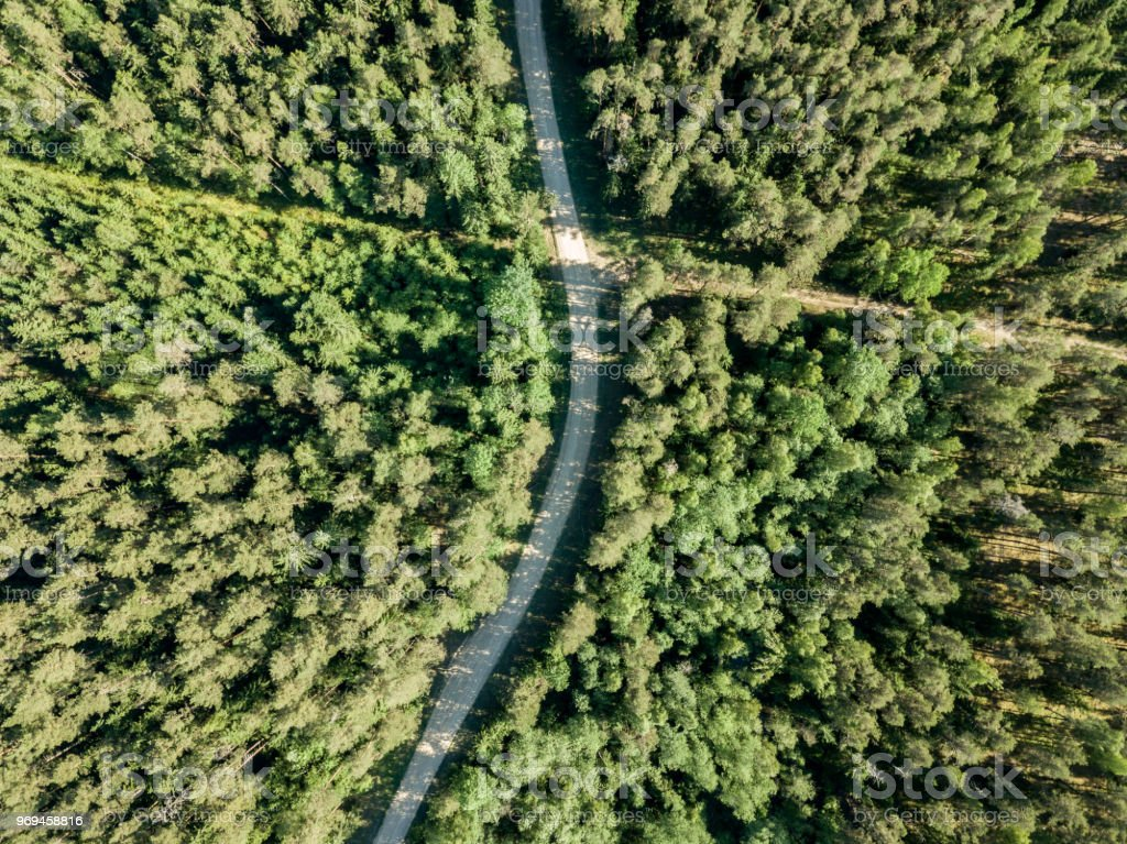 drone image. gravel road surrounded by pine forest from above. summer...