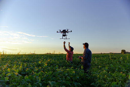 Drone no copyright in a soybean field,