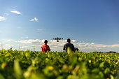 istock Drone in soybean crop. 1306713420