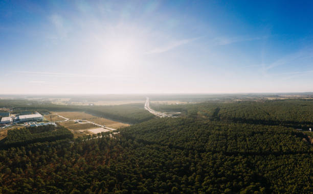 drone photo of the forest of Gruenheide, Berlin Brandenburg, Tesla giga factory stock photo