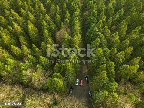 istock Drone point of view of a forest in winter with vehicles parked, Roscommon, Ireland. 1129178588