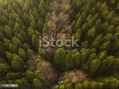 istock Drone point of view of a forest in winter with vehicles parked, Roscommon, Ireland. 1129178604