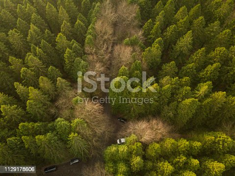 istock Drone point of view of a forest in winter with vehicles parked, Roscommon, Ireland. 1129178606
