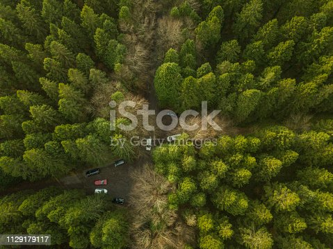 831591456 istock photo Drone point of view of a forest in winter with vehicles parked, Roscommon, Ireland. 1129179117