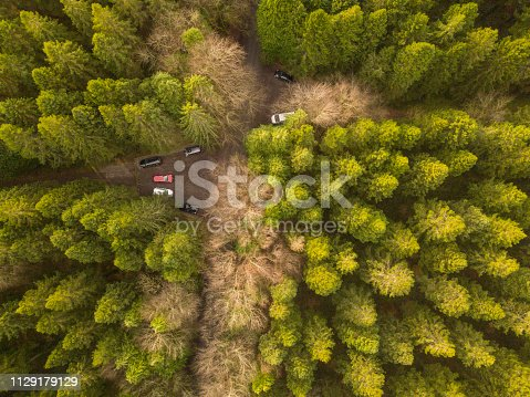 831591456 istock photo Drone point of view of a forest in winter with vehicles parked, Roscommon, Ireland. 1129179129