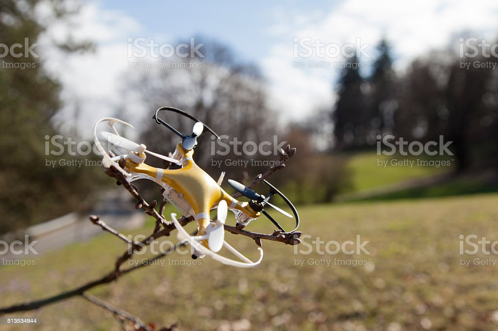 Drone quadcopter crashed on tree in city park stock photo