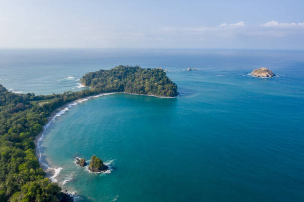Drone view of Manuel Antonio national park in Costa Rica Drone view of Manuel Antonio national park in Costa Rica cetacea stock pictures, royalty-free photos & images