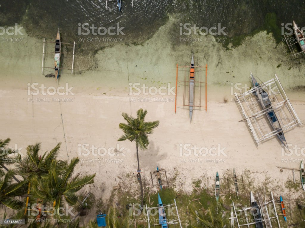 Drone View Of Young Woman On Palm Tree Philippines Stock