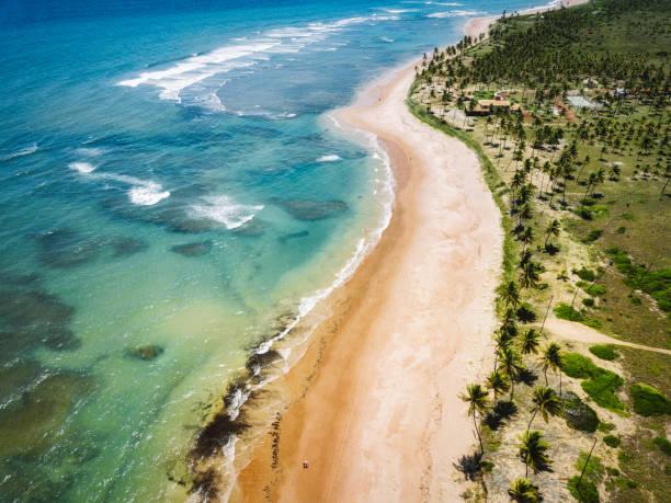 vista de zangão na costa com palm beach, na bahia, brasil - nordeste - fotografias e filmes do acervo