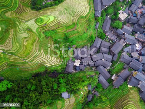 directly above drone view on village in the Longsheng rice terrace fields