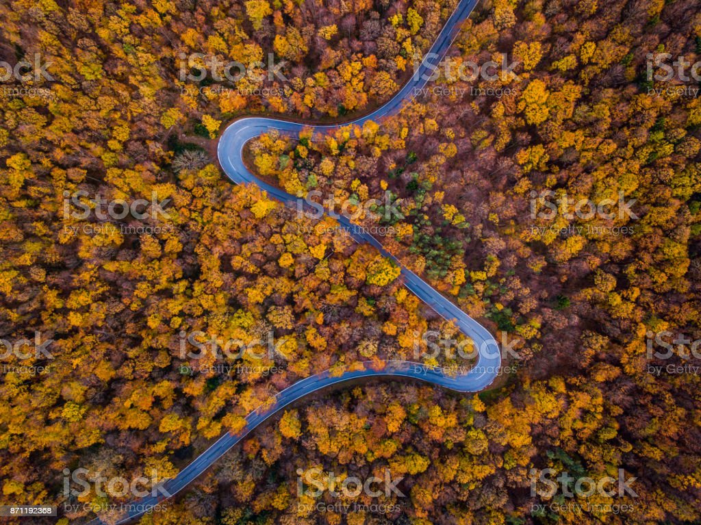 Drones: An Aerial Road Trip - autumn forest with curved road stock photo