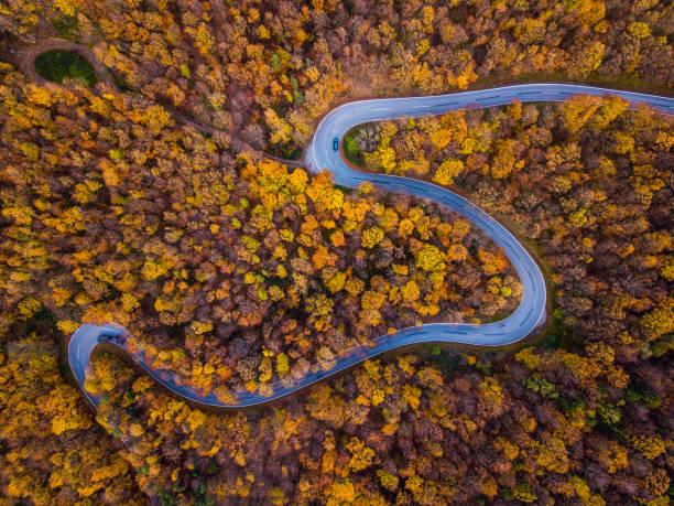 drones: une antenne road trip - route de campagne sinueuse dans la forêt d'automne coloré - feuillage automnal photos et images de collection