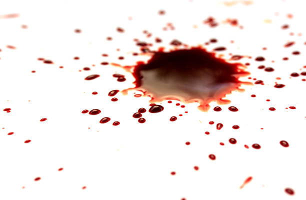 drop of blood on white background stock photo