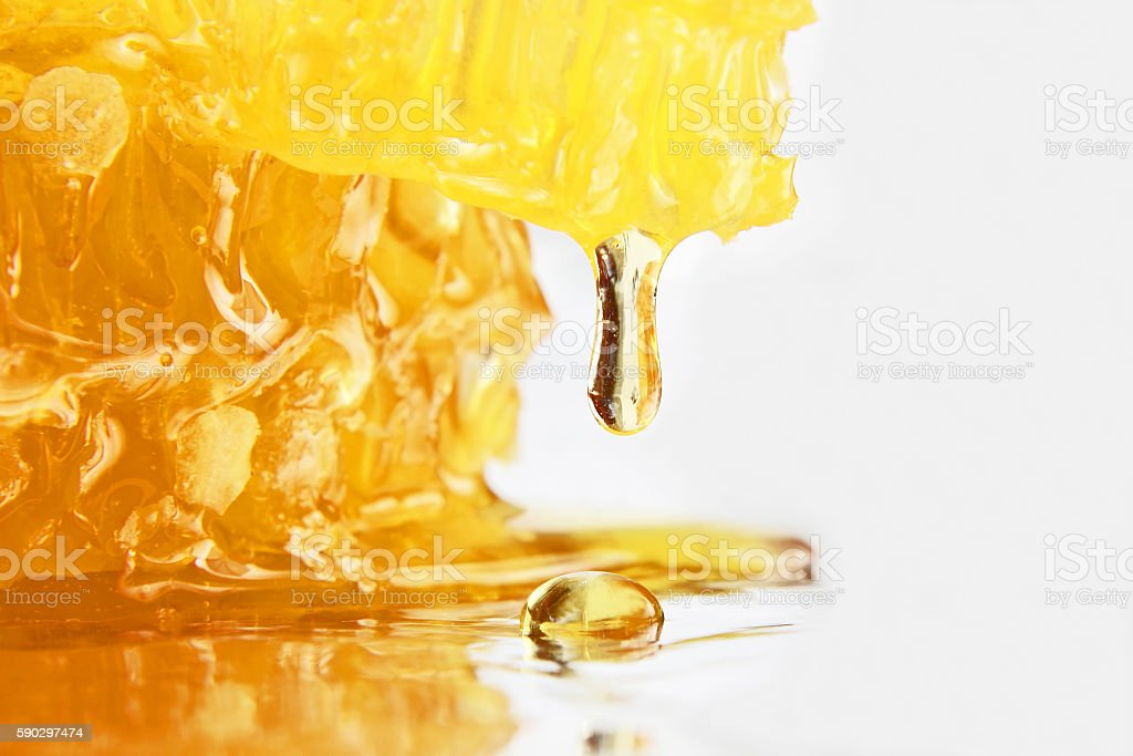 drop of honey dripping from the honeycomb closeup royaltyfri bildbanksbilder