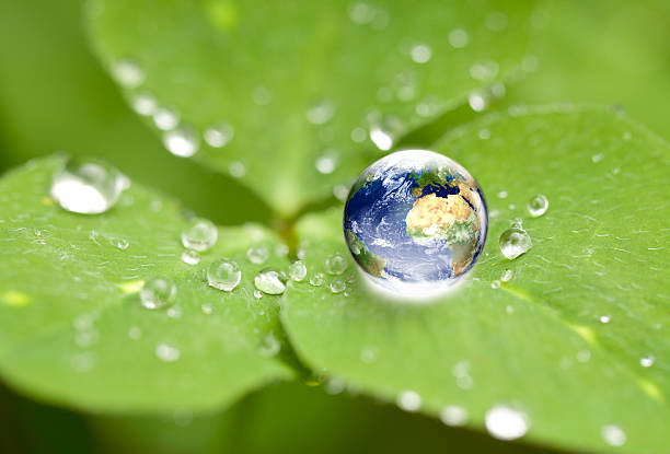 Drop of water on a leaf with the world inside enviornmental conservation concept: shiny globe in waterdrop on cloverleaf. Very small depth of field around the world globe. water wastage stock pictures, royalty-free photos & images