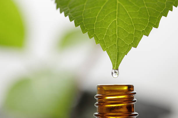 drop - naturopathy stock photos and pictures