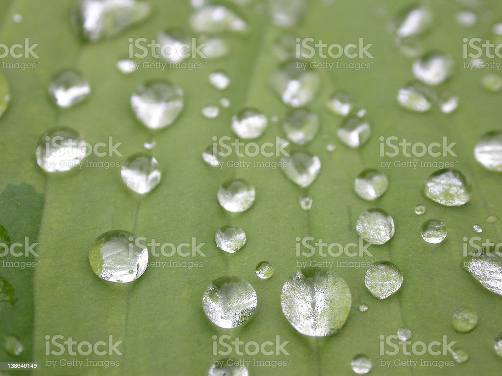 Droplets 4 royalty-free stock photo
