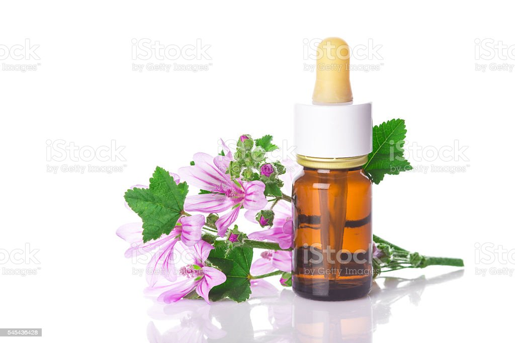 Dropper bottle with mallow malva extract stock photo