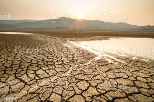 Torka Och Klimatförändringens Inverkan-foton och fler bilder på Brinna