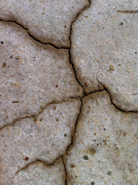 kuraklık ve kırık toprak - serpilguler stok fotoğraflar ve resimler