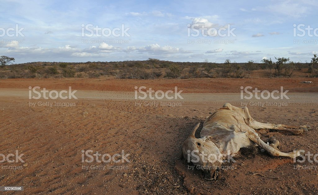 Drought and Kenya: climate change in Mandera district stock photo