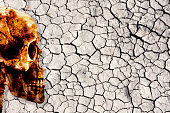 Image of drought land with a human skull as a metaphor of human intervention and guilt