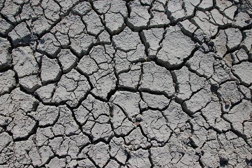 Close up of drought cracks