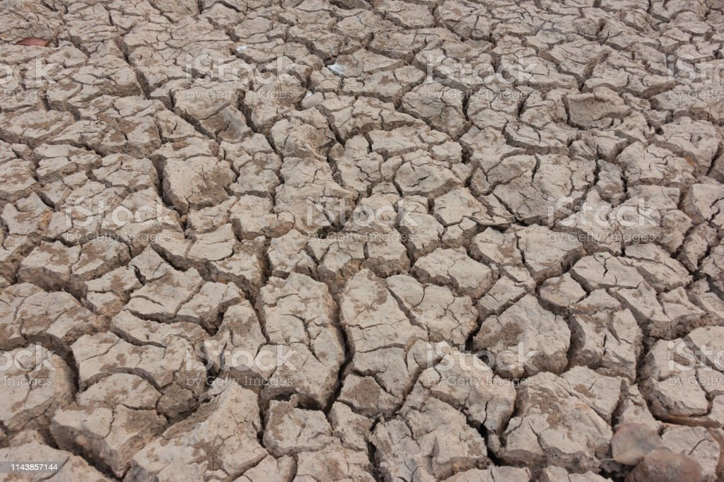 Drought, earth cracks, natural disaster