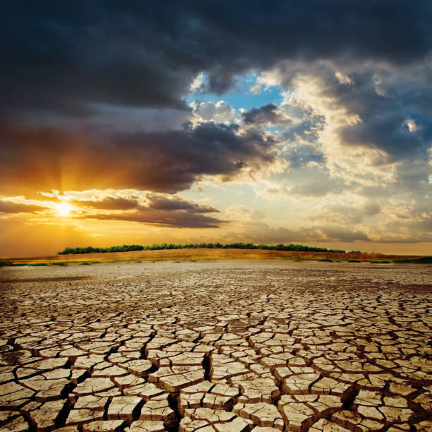 drought earth in sunset. dramatic sky over desert. change climate - dry stock pictures, royalty-free photos & images