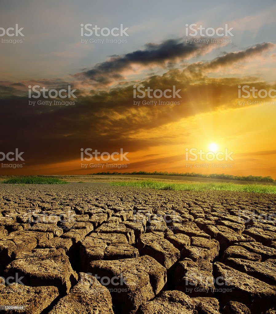 Drought land showing cracks as the sun is setting royalty-free stock photo