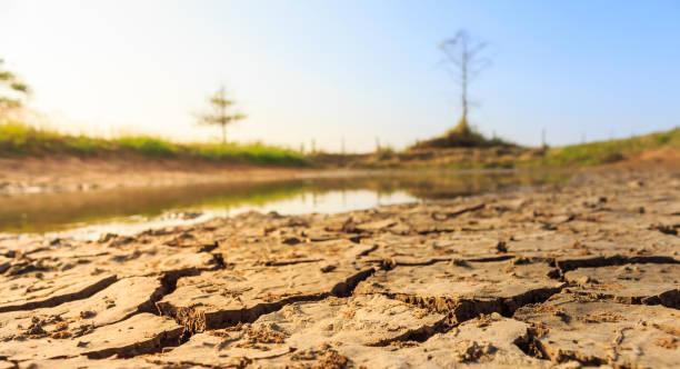 kuraklık arazi bu kadar susuz - kuraklık stok fotoğraflar ve resimler