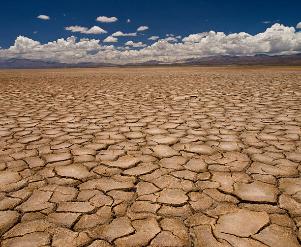 Drought Large field of baked earth after a long drought. lake bed stock pictures, royalty-free photos & images