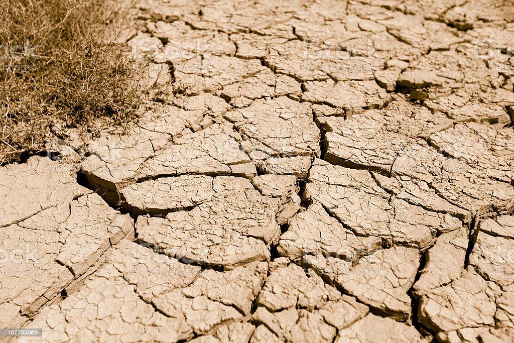 Drought landDrought land