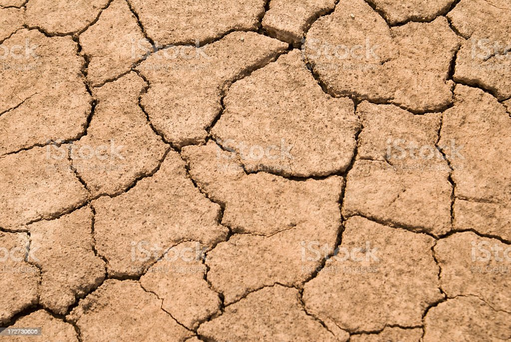 Crack and dried earth.