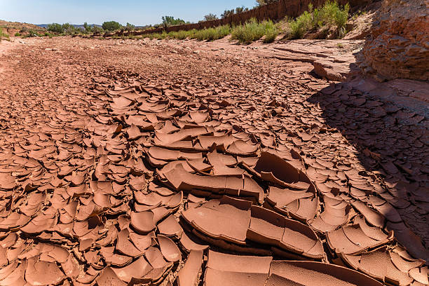 drought cracked earth in dried riverbed riverbed stock pictures, royalty-free photos & images