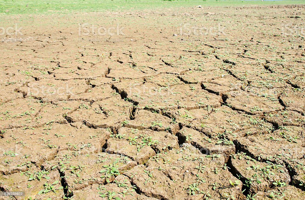 Drought, the ground cracks, no hot water, lack of moisture. royalty-free stock photo