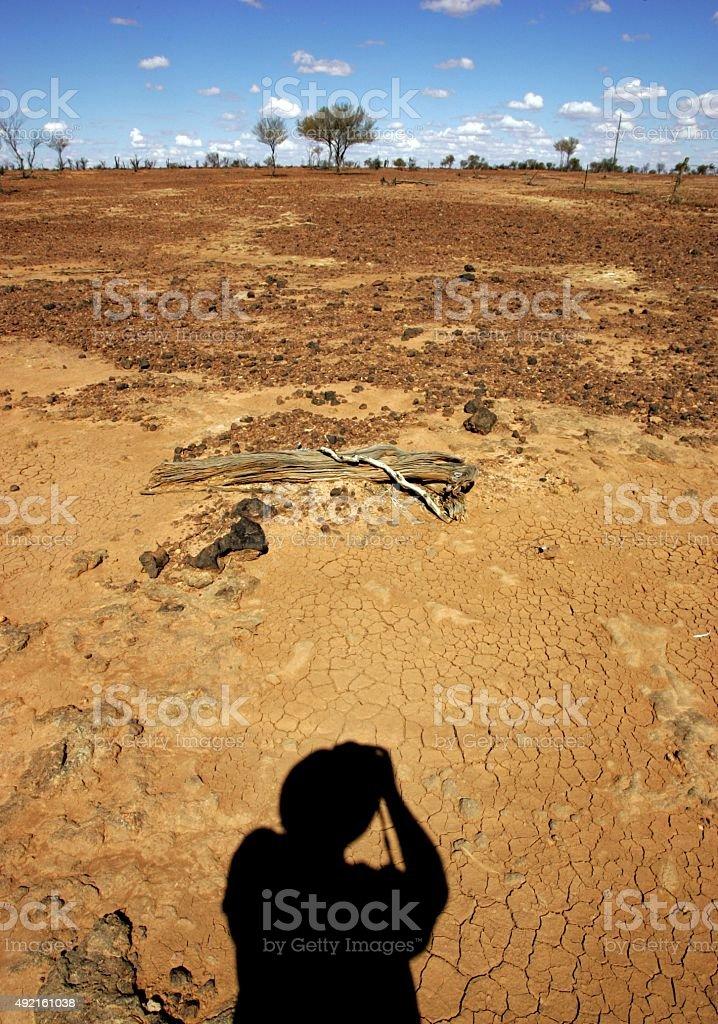 Dürre mit toten Bäumen und Öde stone land – Foto