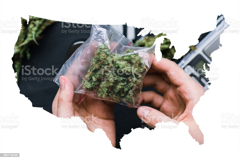 A drug dealer holds a packet of marijuana weed on a dark background top view royalty-free stock photo