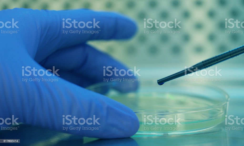 Drug development stock photo