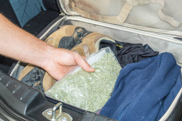 drug smuggling in case drug smuggling in case smuggling stock pictures, royalty-free photos & images