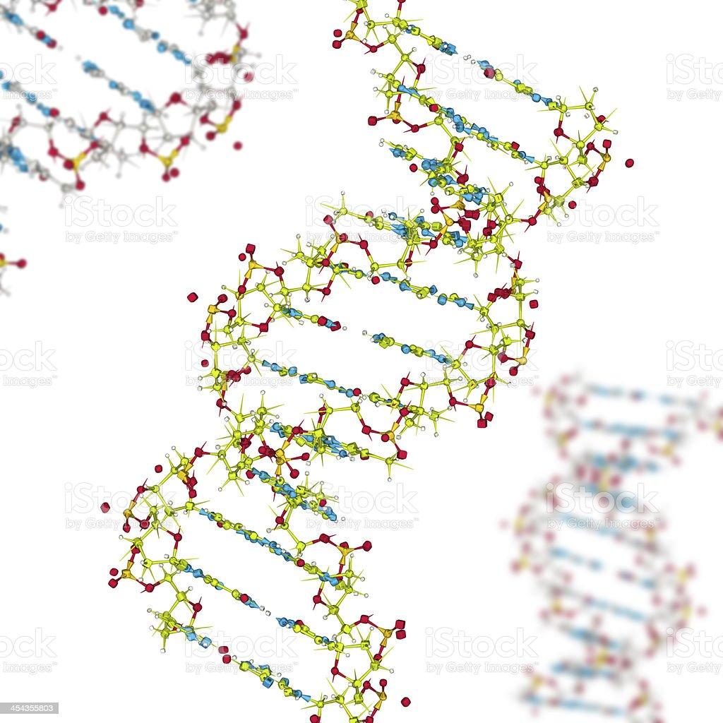 DrugModel:  DNA royalty-free stock photo